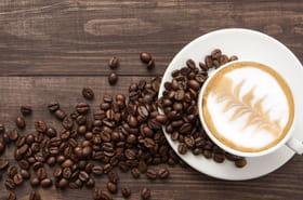 Savourez votre café, il pourrait ne plus y en avoir pour vos enfants