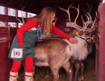 Michelle ou la vie sauvage : Grand Nord