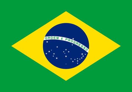 Score Brésil