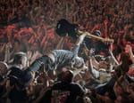 Die Toten Hosen : Phénomènes punk rock