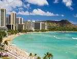 Aux racines d'Hawaii