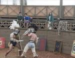 La vie au temps des gladiateurs