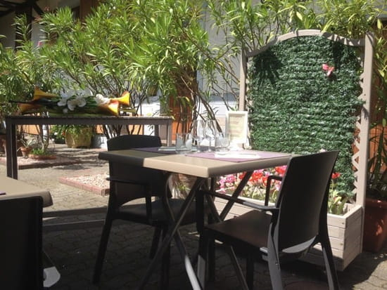 Entrée : L'Auberge du Cygne  - La terrasse ombragée dans la cour -