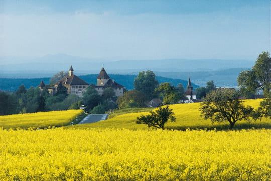Zurich Région