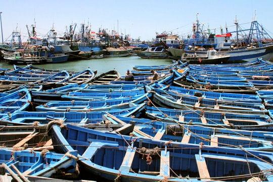 Essaouira, cité portuaire