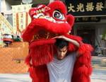 Splendeurs de la Chine