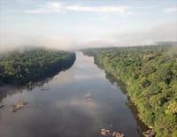 Les parcs naturels... en Minuscule : Guyane