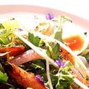 Un Chien dans un Jeu de Quilles  - Restaurant Rue Praire, Place Jean Jaurès Saint-Etienne -   © Un Chien dans un Jeu de Quilles