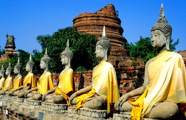 Bouddhas sur leur 31