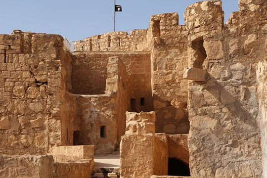 Palmyre en Syrie : un temple détruit à l'explosif par l'EI