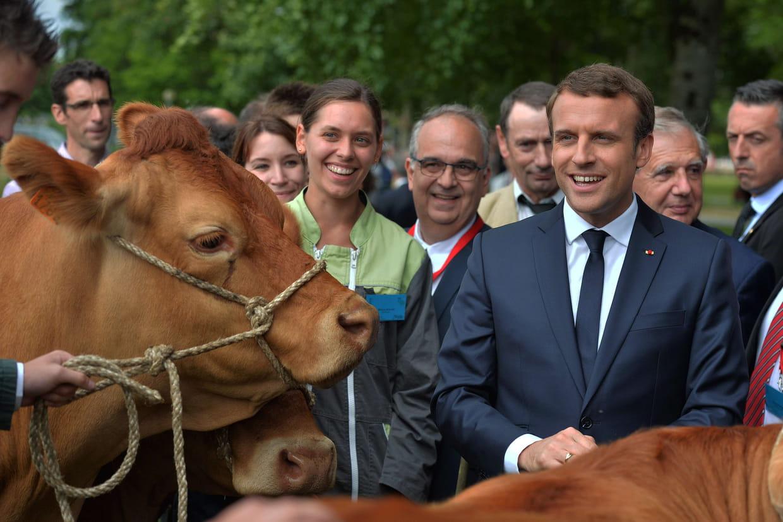 Salon de l 39 agriculture emmanuel macron attendu pour l for Salon agriculture adresse