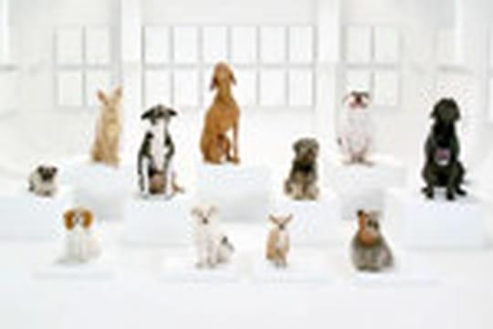 Publicité Volkswagen: des chiens reprennent le thème de Star Wars