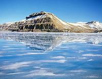 Ushuaïa nature : Le repaire de la licorne (Arctique)