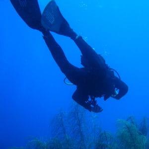 que ce soit en apnée ou avec des bouteilles, ces plongeurs de l'extrême