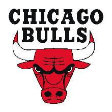 la star des chicago bulls s'est mis au baseball... sans succès