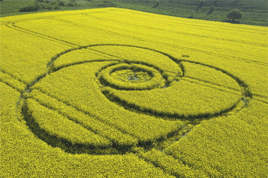 Les crops circles