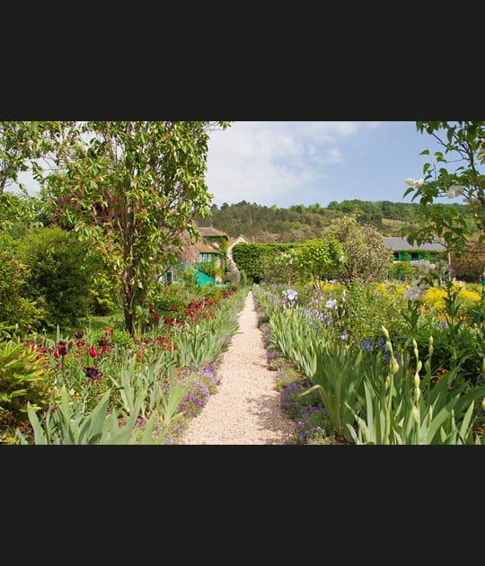 Allée d'iris et de tulipes