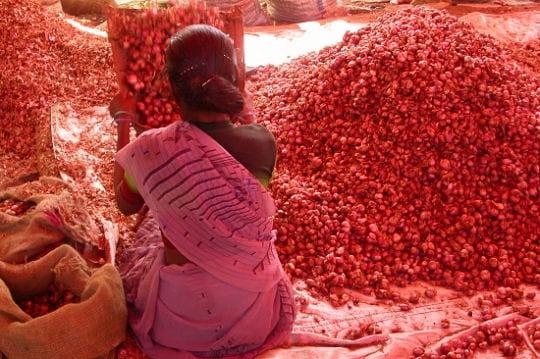 L'Inde du Sud aux couleurs éclatantes