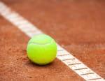 Tennis : Tournoi ATP de Lyon - Quarts de finale