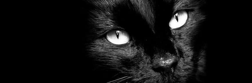 Quelles sont les origines des superstitions?