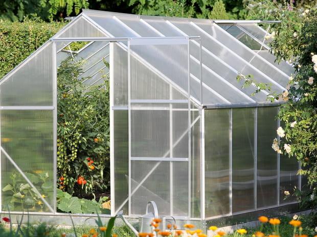 Meilleure serre de jardin: notre sélection des bons plans du moment