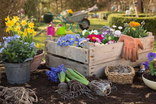 Jardiner économique