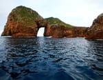 Dans les eaux bleues de Nouvelle-Zélande