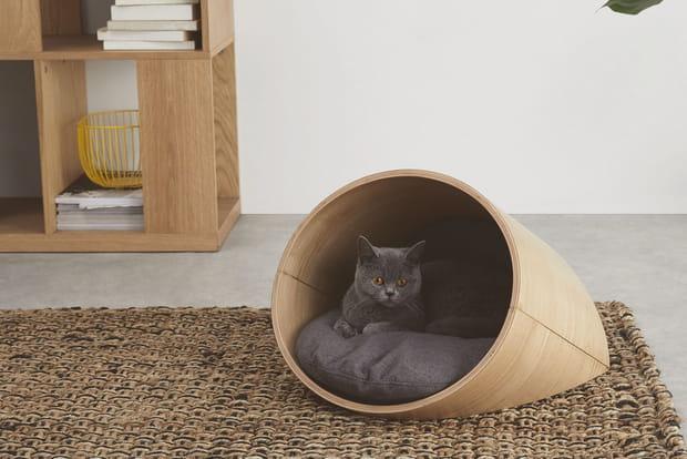 Design et confort