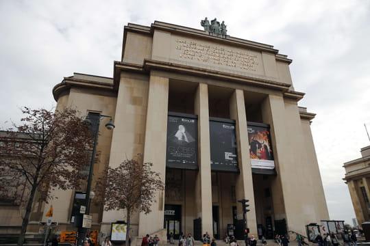 Musée de l'Homme: que voir, tarifs, horaires, préparez votre visite