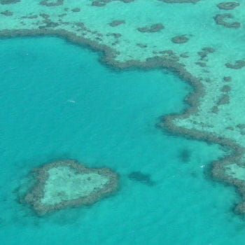 la grande barrière de corail depuis le ciel