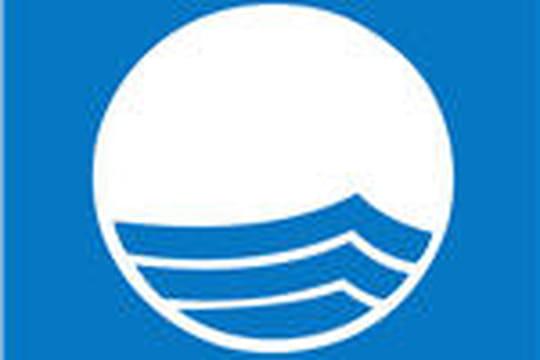 """Pavillon Bleu 2009: les ports de plaisance """"écolo"""" ont leur trophée"""