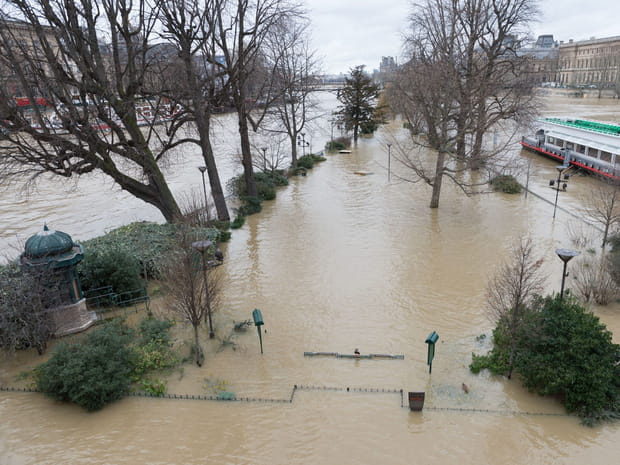 La crue de la Seine en images