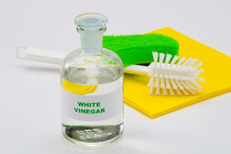 Bicarbonate De Soude Contre Les Pucerons vinaigre blanc : quelles utilisations écologiques pour la