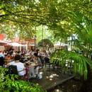 Le Palmarium  - Terrasse sur parc -