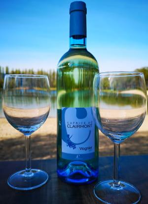 Boisson : Les Voiles du Lac  - vin -   © les voiles du lac