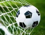 Football : Euro - Autriche / Macédoine
