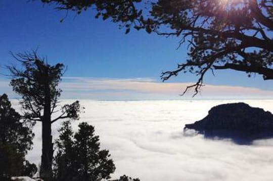Grand Canyon en hiver: les images spectaculaires