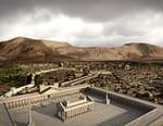 Palmyre, patrimoine menacé
