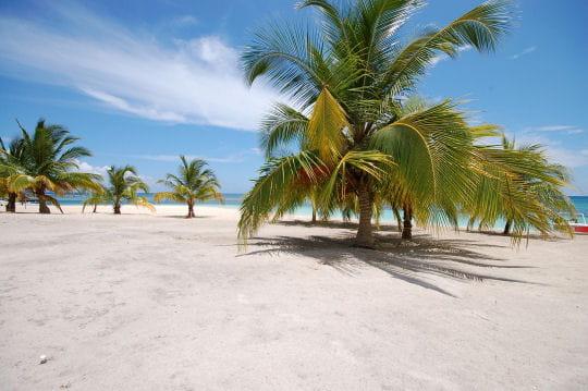 Une plage très prisée