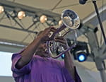 Paris Jazz Festival 2013