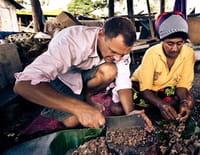 Les nouveaux explorateurs : Fred Chesneau au Vanuatu