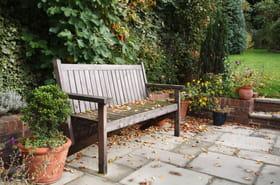 Ces choses à faire (absolument) dans le jardin l'hiver