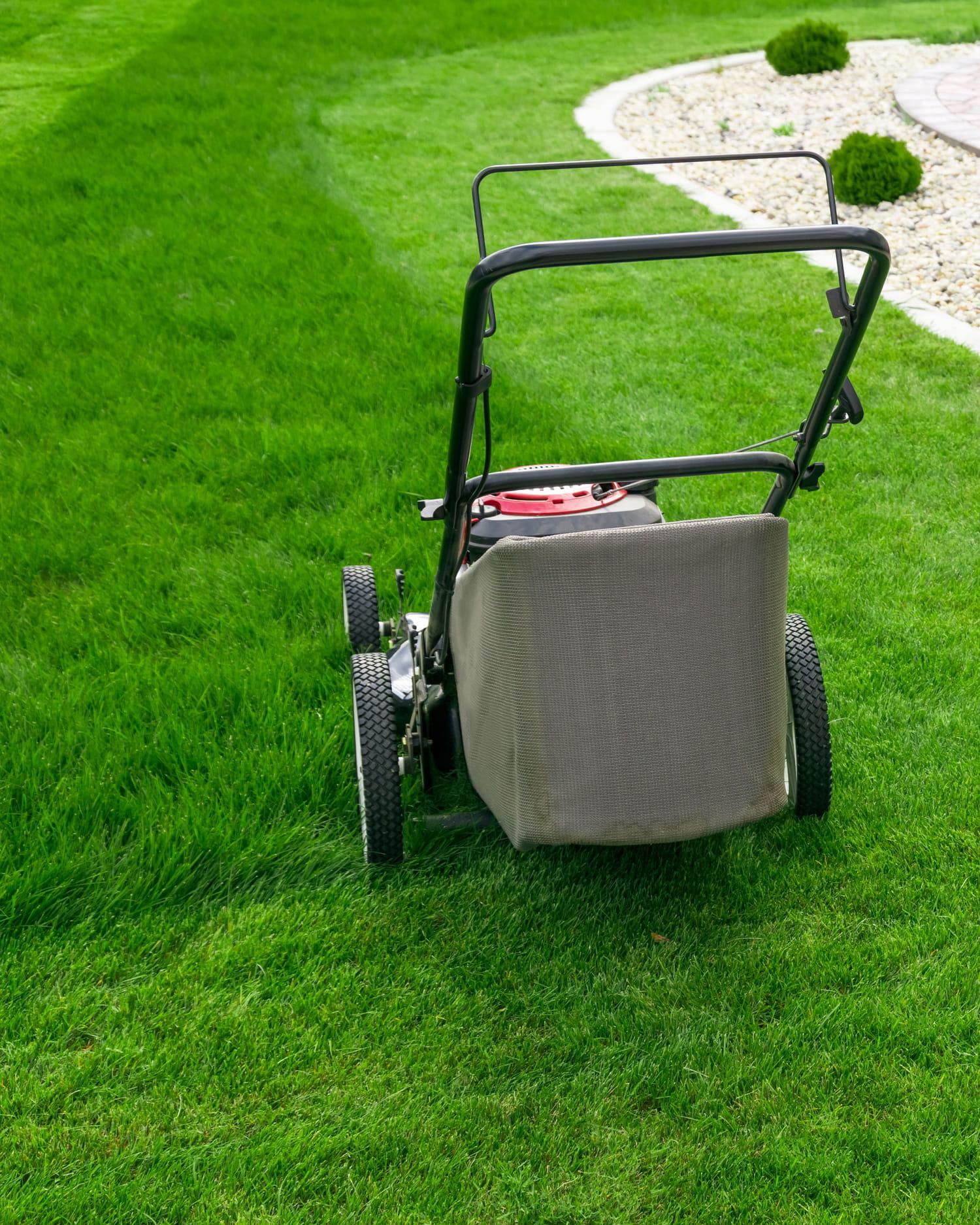 Pelouse: comment bien entretenir sa pelouse