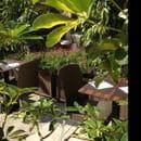 Restaurant : Panice