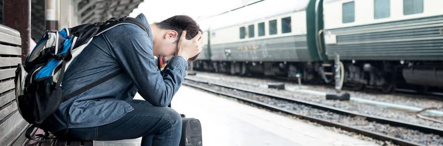 TGV, TER: quels trains sont lesplus souvent enretarden France?