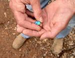 Chercheurs d'opale