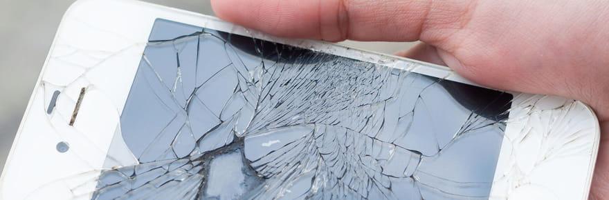 Apple Store de Dijon: des iPhones fracassés par un homme armé d'une boule de pétanque [VIDEO]