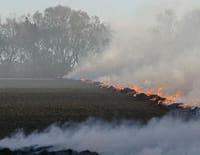 Les fureurs de la nature : Incendies : une étincelle et tout s'embrase