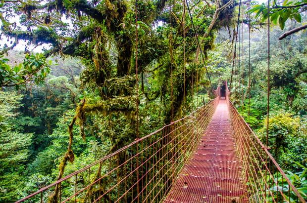 Réserve biologique Monteverde