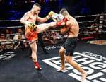 Kick-boxing - Fight Night 2018